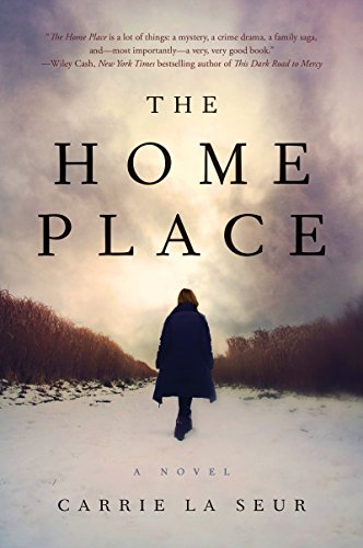 The Home Place: A Novel cover
