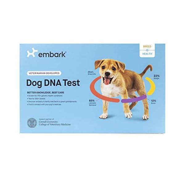 Embark-Dog-DNA-Test-Breed-Health-Kit-Breed-Identification-Canine-Genetic-Health-Screening