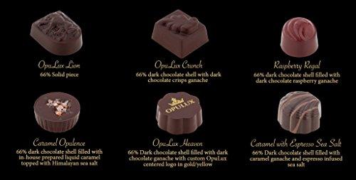 Gourmet, Artisan Chocolates, Made with Certified Organic and Fair Trade Cacao. Gluten Free. 100% Satisfaction Guarantee. 24-Piece Elegant Gift Box
