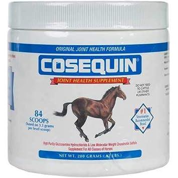 Amazon.com: Nutramax, Cosequin Equine polvo: Mascotas