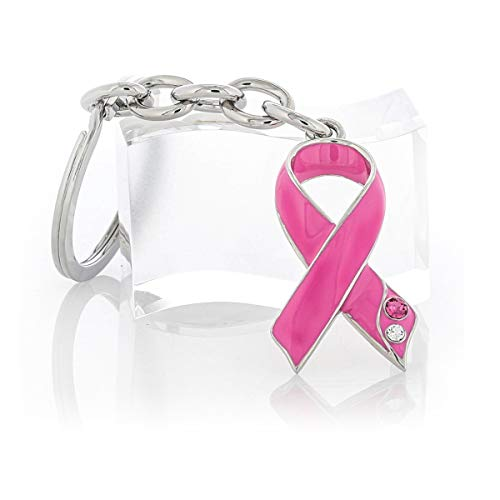 BaronLFI Pink Ribbon Key Chain