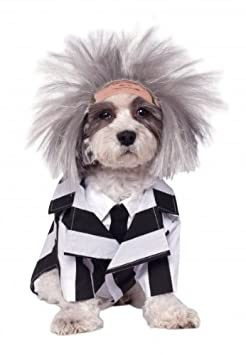 Rubies Costume Company Beetlejuice Pet Costume Large 580051 L