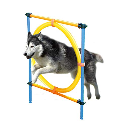 PAWISE Dog Agility Training Hoop, Outdoor Dog Agility Hurdle Toy Set