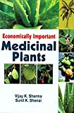 img - for Economically Important Medicinal Plants book / textbook / text book