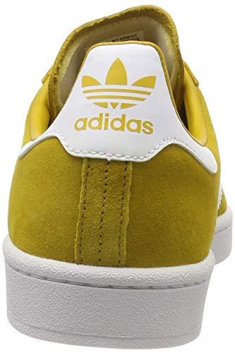 Da multicolor Adidas Scarpe Ginnastica Campus 000 Multicolore Uomo 1qqPgFnZ