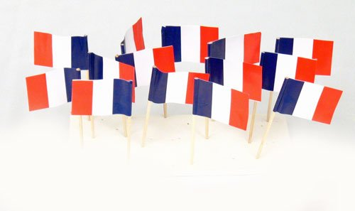 France French Flag Toothpicks 100 product image