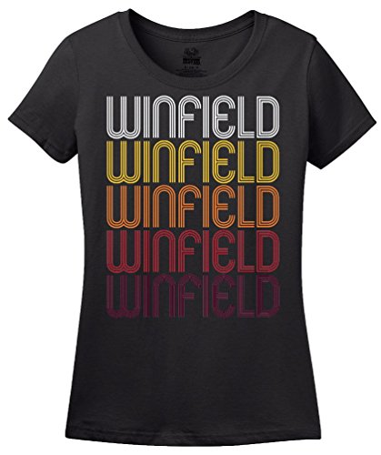 Winfield, IL | Retro, Vintage Style Illinois Pride T-shirt