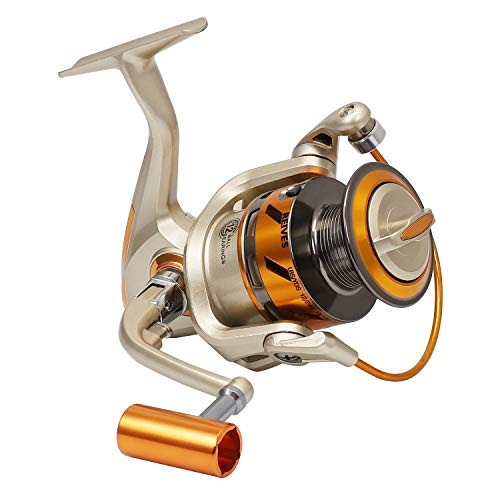 (Ioutdoor Products Spinning Fishing Reel Seamless Professional Lure Fishing Gear Reels Right Left Hand Saltwater Freshwater Fishing 5000 3BB/10BB+1RB Bearing 5.5:1 Gear Ratio-Golden)