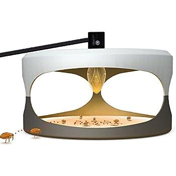 Flea Trap With 2 Glue Discs,Home Pest Contral. Non-poisonous and Natural Flea Killer, Trapest Sticky Flea Bed Bug Trap.