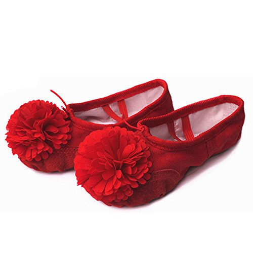 Soft Ballet Red with Yoga ZEVONDA Shoes Canvas and Flower Flats Gymnastics Flats Girls Shoes Women's Dance nSwwq0xTa