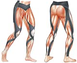 CW-X Men's Stabilyx Joint Support Compression