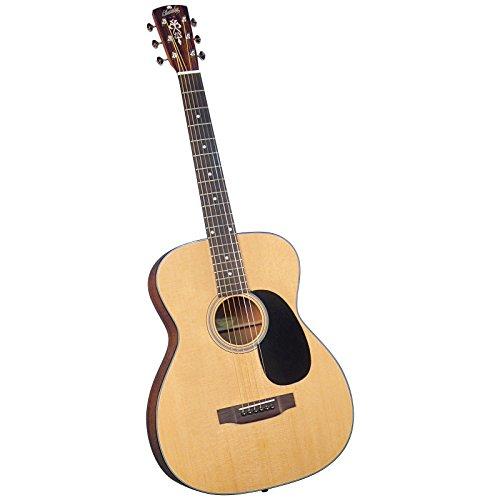 Blueridge BR-42 Contemporary Series Acoustic 12-fret 000 Guitar (Best 12 Fret Acoustic Guitar)