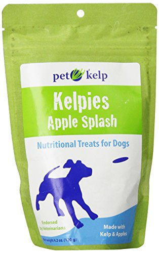 Pet Kelp Apple Splash Dog Supplement