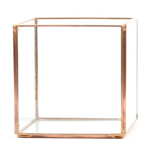 Koyal Wholesale Geometric Terrarium Glass Table Decoration, Planter for Succulents, Cactus, Air Plants, Indoor Plants, Outdoor Plants (4.72-Inch Cube, Copper)