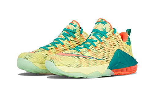Nike Lebron Xii Laag Prm Heren Basketbal Trainers 776.652 Sneakers Schoenen Multicolor