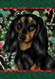 Best of Breed Dachshund B/T Longhair Holiday Treats Christmas Large Flag Review