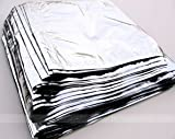 100 Mylar Bags Silver 10 X 16 with Free 200cc Oxygen Absorbers (100)