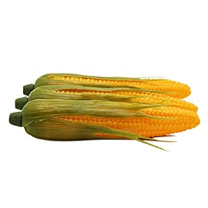 Barbariol Babariol Artificial Corn, Lifelike Simulation Fake Vegetable Corn (3 pcs) 2