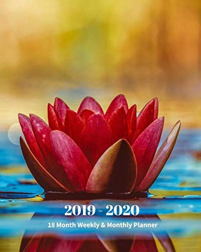 2019 - 2020 | 18 Month Weekly & Monthly Planner: July 2019 to December 2020 |Monthly Calendar with U.S./UK/ Canadian/Christian/Jewish/Muslim Holidays ... 8 x 10 in.-Water Lily Garden Vol 2