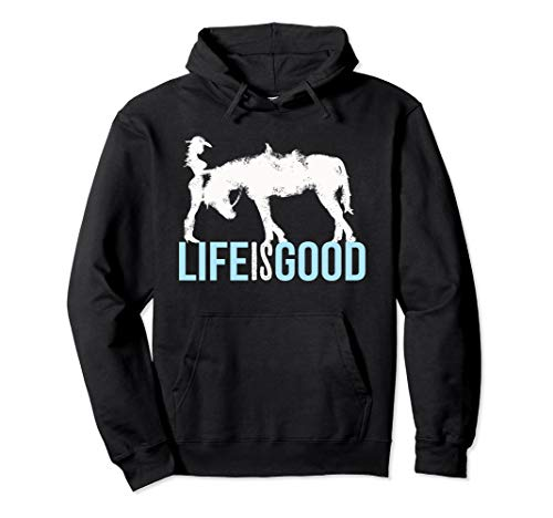 (Horse And Girl Hoodie for Horse Lover)