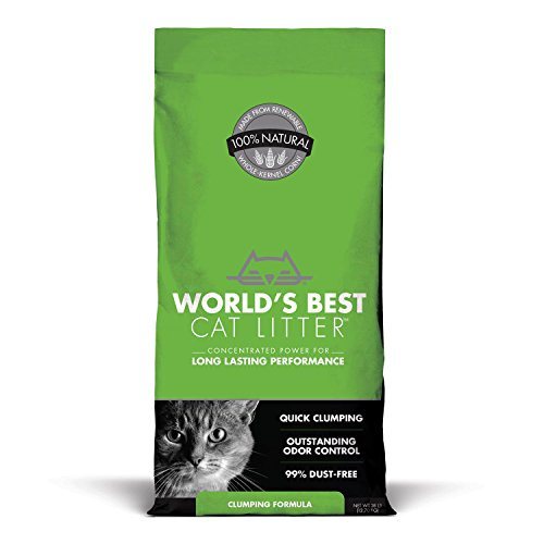 World's Best Cat Litter 41tcrvOor9L