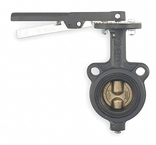 Butterfly Valve, Wafer, 2 1/2 In, CI, EPDM