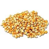 Maïs Pop corn 500 g