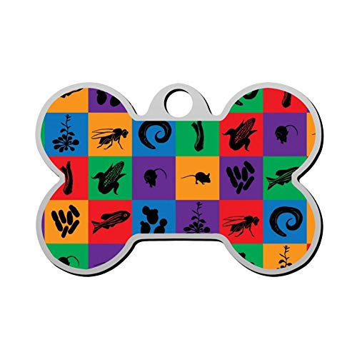 XIAIGOGO Model_Organism_Mosaic Pet Id Tags are Personalized to Print Skull-Shaped Dog and Cat -