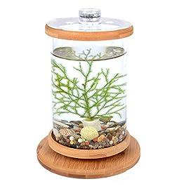 Norgail Creative Rotary Aquarium Betta Mini Fish Tank with LED Lighting Desktop Bowl Round Aquarium Decoration for Home Living Room Bedroom Office Spinning Bamboo Rack