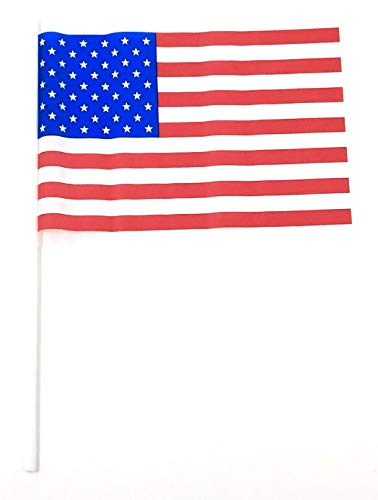 Sea View Treasures 100 Bulk Value Plastic American Flags - 4