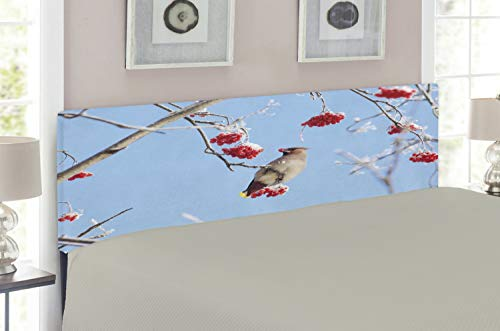 Lunarable Bird Headboard for Queen Size Bed, Waxwing Eating Frozen Rowan Berries Clear Blue Sky View Cold Winter Weather, Upholstered Metal Headboard for Bedroom Decor, Pale Blue Vermilion