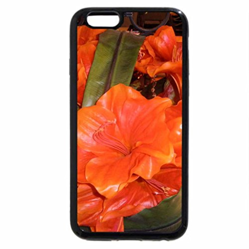 iPhone 6S / iPhone 6 Case (Black) Red Flowers on the cruise ships