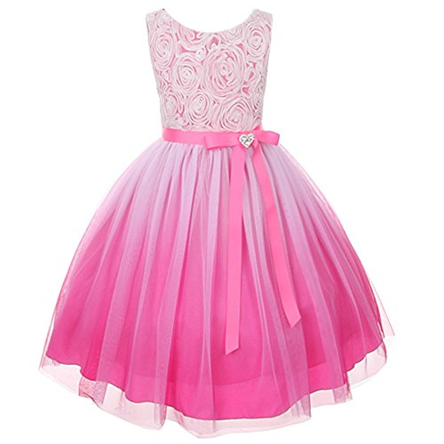 Bubble Dress Ombre (Fuchsia Ombre Rosette Special Occasion Flower Girls Dress Christmas Wedding 2-14)