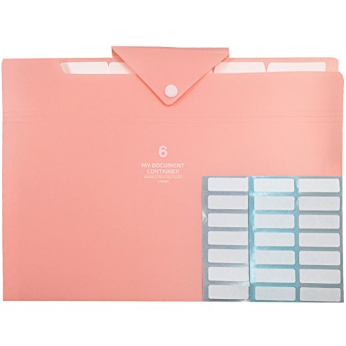 PheoGood 6 Pockets Expanding File Folders with 2 Pack Labels- Letter Size & A4- Baby Pink Color with Triangle Closure- Portable Accordion Organizer for School Work, Office Document and Receipts