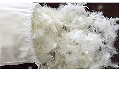 Bulk Natural 5% Goose Down Stuffing, 1/4Lb, Pillow Stuffing, Make Your Own Pillows, Jakets and More, DIY Gift for Your Family Or Friends