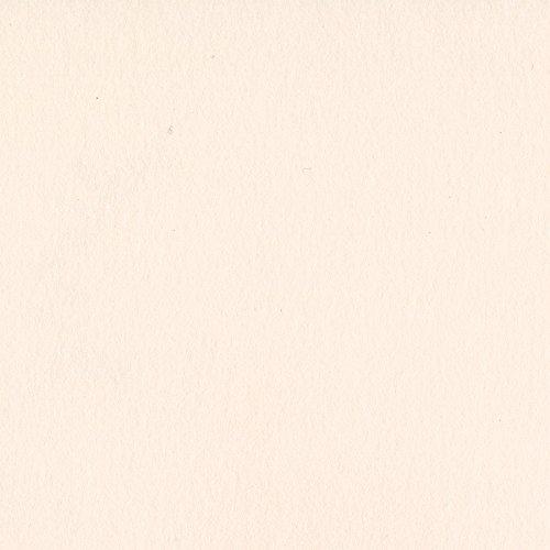 (Bazzill CS12-5056 25 Sheets Card Shoppe Pale Rose Heavyweight, 12 x 12 )
