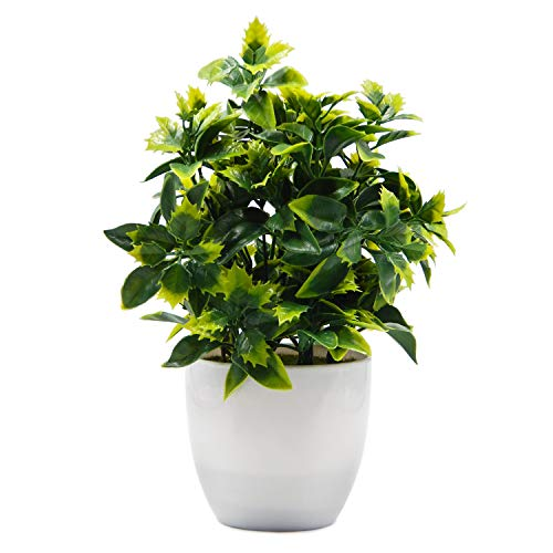 (OFFIDIX Artificial Plastic Mini Plants in White Pot,Desk Plant Artificial Flowers with Vase,Small Faux Plastic Plants for Home Kitchen Garden Office Indoor Decor )