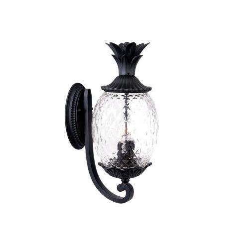 Outdoor Lanai Lighting - 1