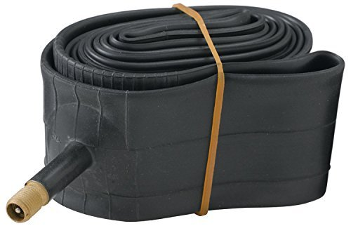 Diamondback 16x1.75/2.125 Thorn Resistant Schrader Valve Bicycle Tube, Black (Renewed)