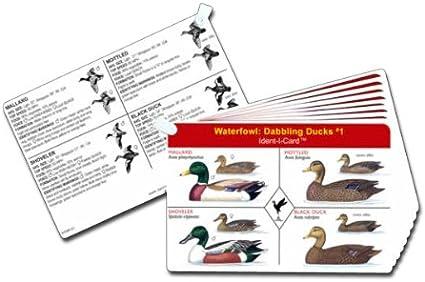 "4/"" X 6/"" NEW Duck Hunter Picture Frame Flying Duck Frame"