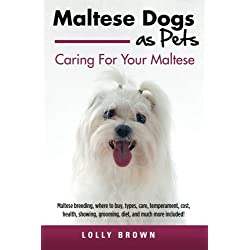Maltese Dogs as Pets: Maltese breeding, where to buy, types, care, temperament, cost, health, showing, grooming, diet, and much more included! Caring For Your Maltese
