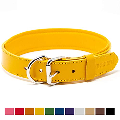 Logical Leather Padded Dog Collar - Best Full Grain Heavy Duty Genuine Leather Collar - Yellow - Large