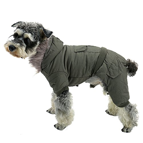 PAWZ Road Pet Clothes Hoodie
