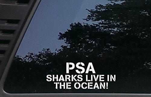 PSA Sharks Live in the Ocean! - 7 3/4