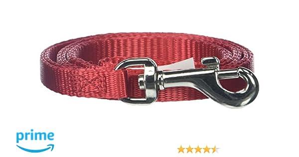Aspen Pet Nylon leash Red 4Length 3//8Wide
