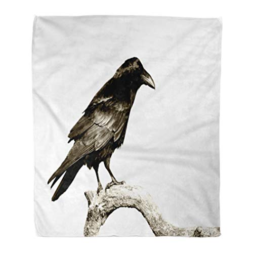 Emvency Decorative Throw Blanket 60 x 80 Inches Black Birds Perched Common Raven Corvus Corax White Halloween Crow Silhouette Warm Flannel Soft Blanket for Couch Sofa Bed -