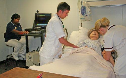Download Nursing - Nursing Concepts 1 Study Guide (The College Network) PDF