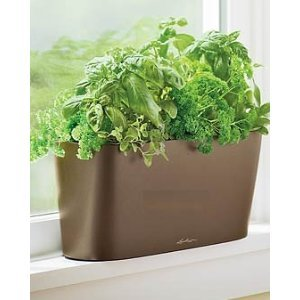 Windowsill Self Watering Planter – Espresso