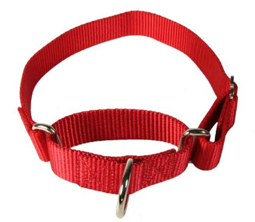 Martingale Heavyduty Nylon Dog Collar Red-MEDIUM, My Pet Supplies
