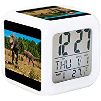 Digital Alarm Clock 7 LED Color Changing Bedroom with Data and Temperature Display (Changable Color